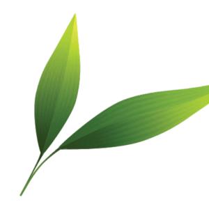 Cropped leaf icon px